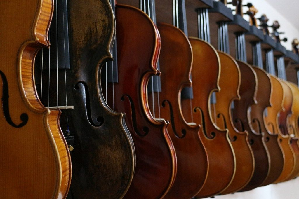 Best Violin for Beginners: Top 10 according to Experts