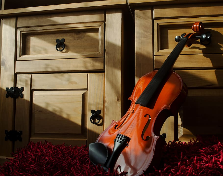 Best Violin Brands in 2021 and Buying Guide